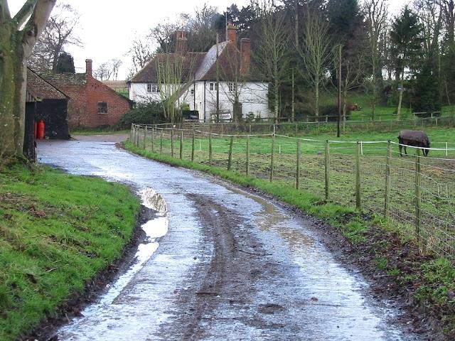 Ileden Farm, Barham Downs