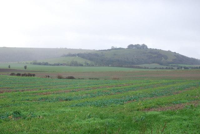 Farmland from A30