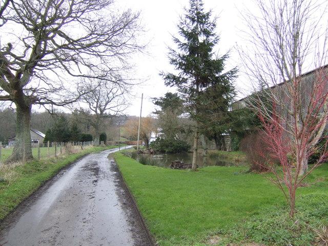 Lane by Sweethaws Farm