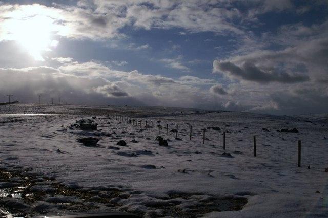 North slope of Caldback Hill