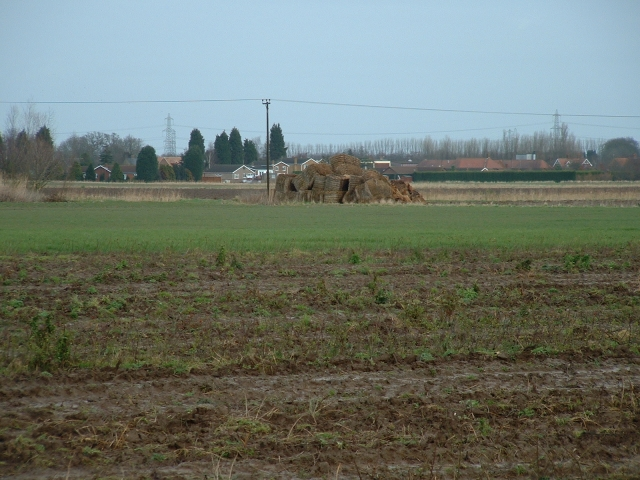 Vegetable fields and straw bales near West Walton