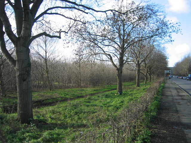 Wick Field, north of Eastway, outside the Olympic Park Boundary