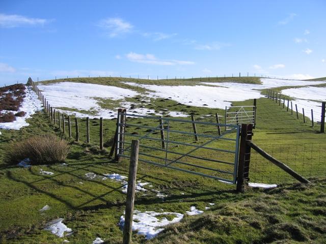 Near Garreg Lwyd