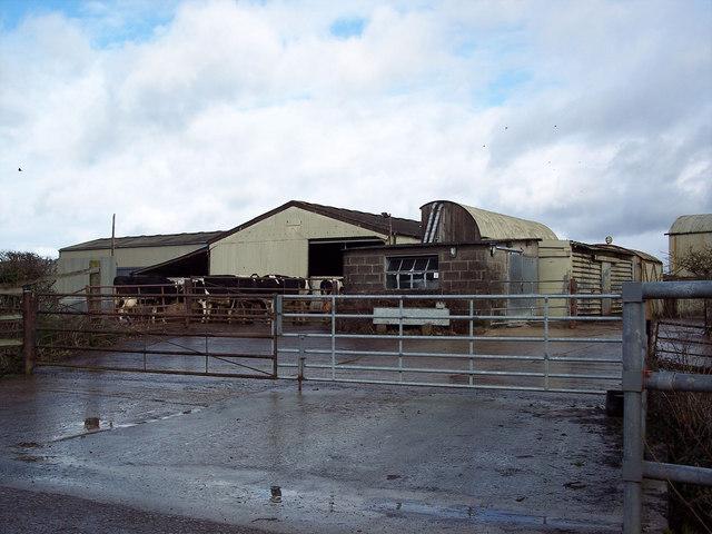 Milking area at Venns Farm