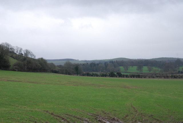Down farmland towards Arundell Farm