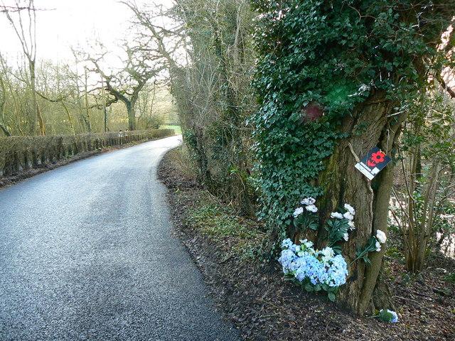 Roadside shrine, Broome Manor Lane, Swindon