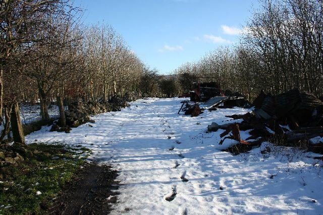 Farm track above Mosley Farm