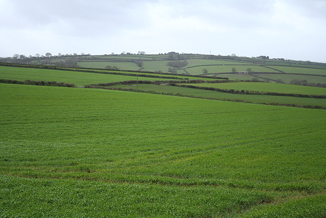 Sampford Courtenay: near Langmead Farm