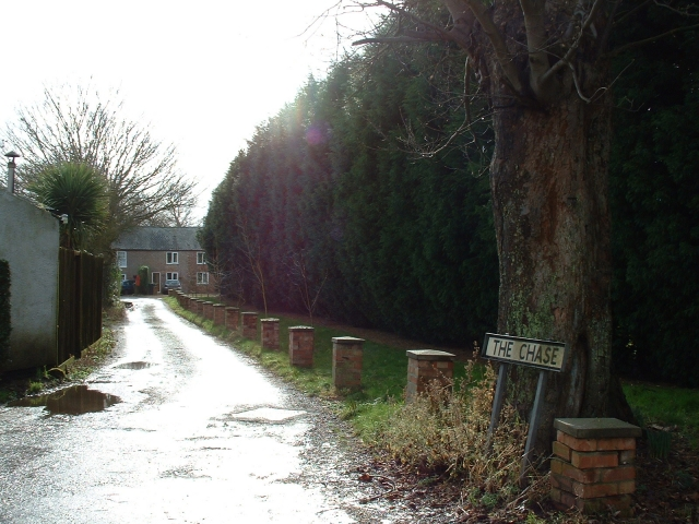 The Chase, West Walton