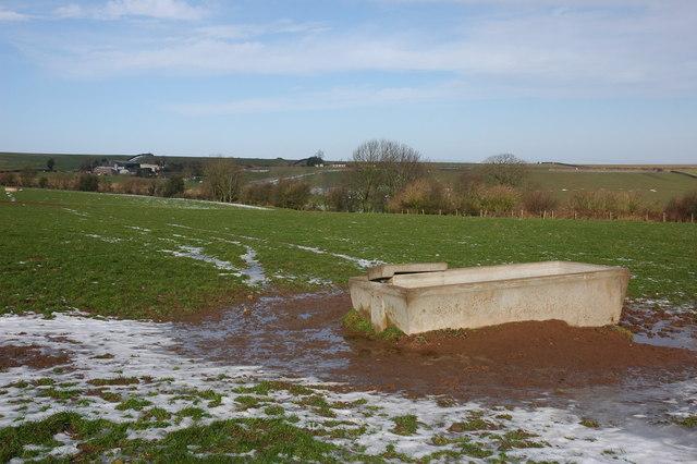 Large concrete drinking trough