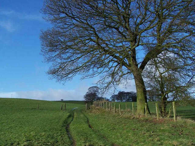 Footpath To Prospect Village