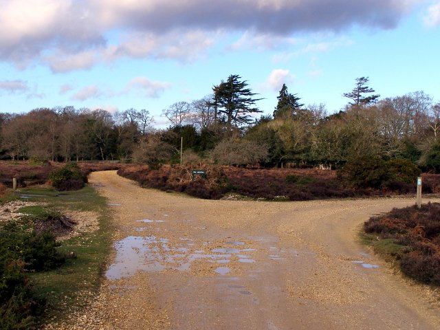 Junction of tracks south of Broomy Lodge, New Forest
