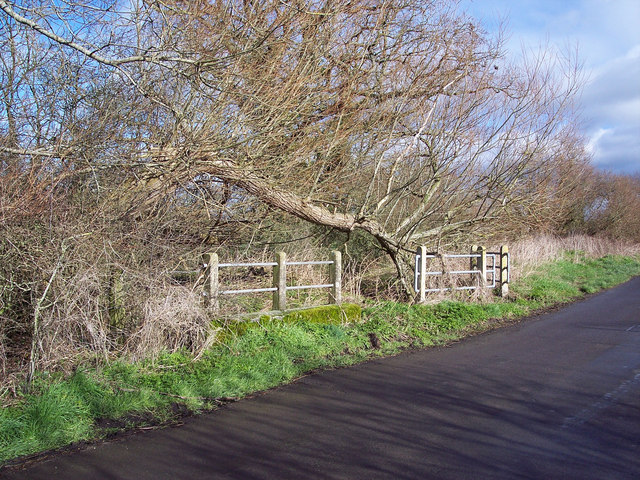 Bridge near Lymburghs Farm