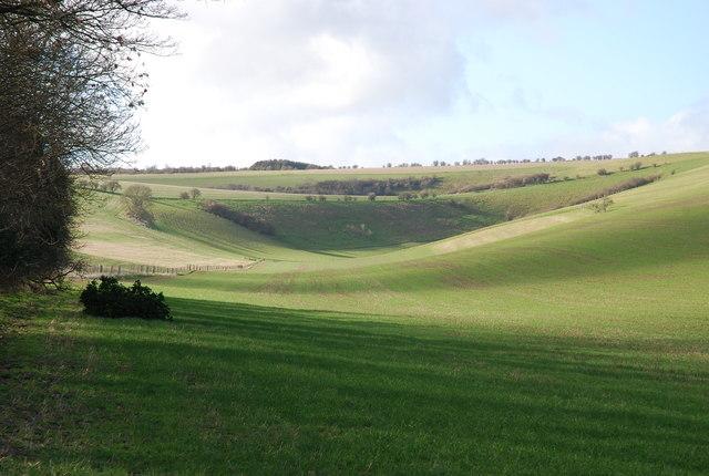Downland north of Norrington Farm