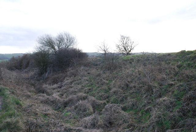 Cross Dyke by Old Shaftesbury Drove
