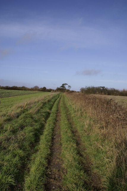Bridleway on Muston Down