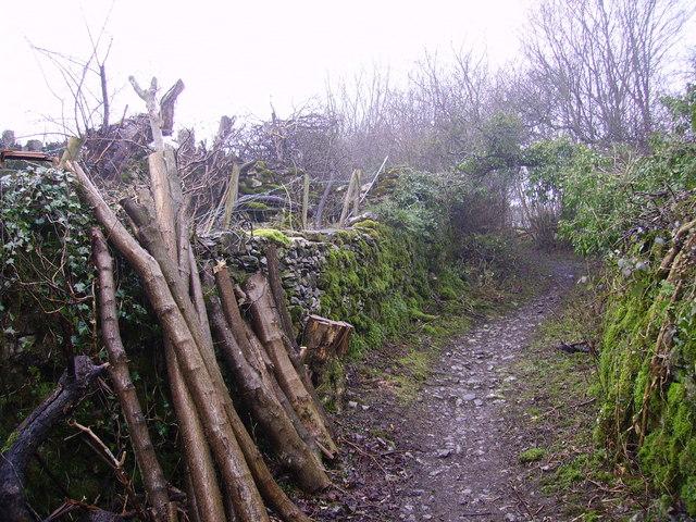 Footpath, Whitebeck