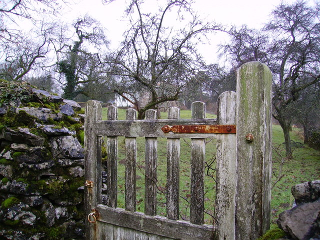 Gate and Orchard