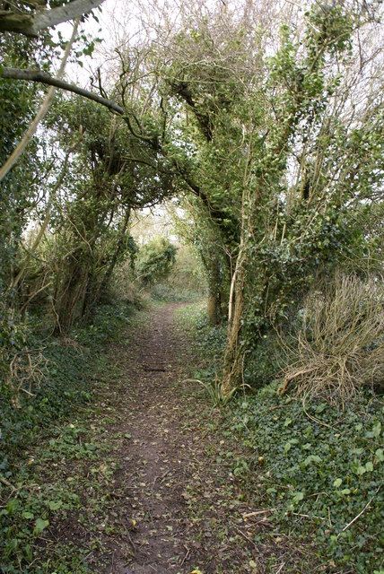 Bridleway to Muston Down