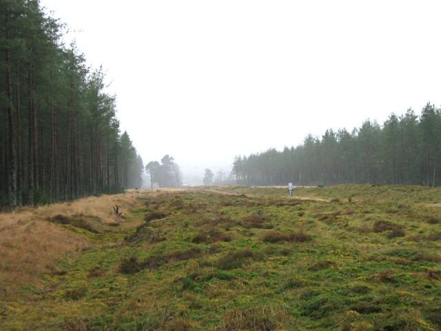 Cleaven Dyke