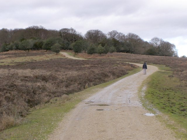 Track to Fritham, Ragged Boys Hill, New Forest