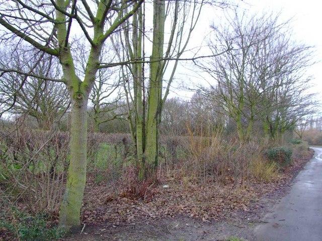 Gloucester Park (1)