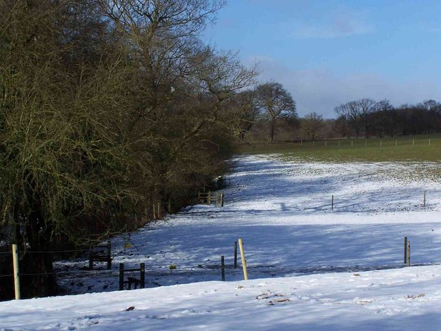 Footpath To Nunswell