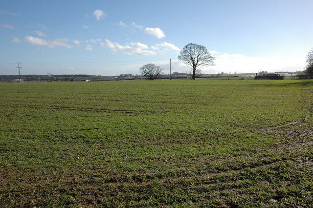 Field to the north of Winsley House