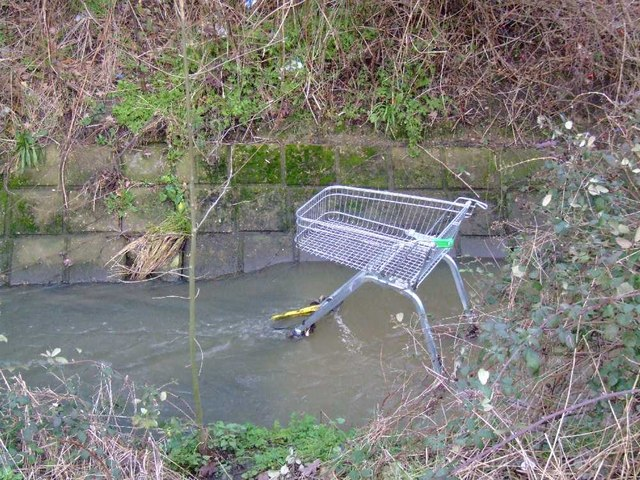 Shopping trolley surprise!