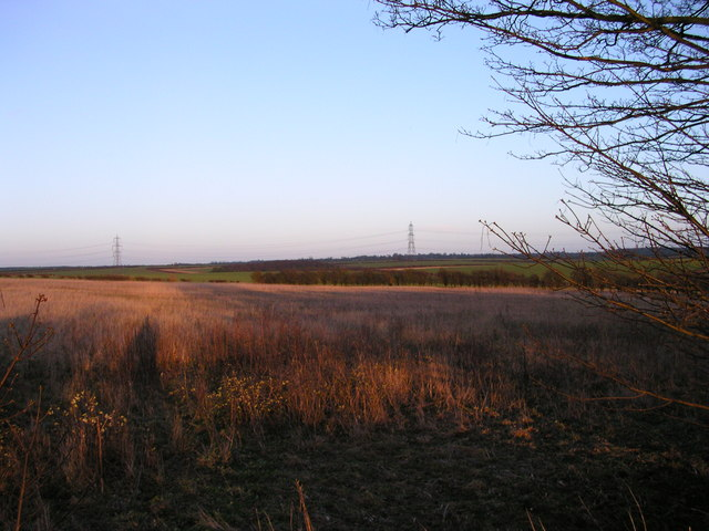 Looking away from the sunset toward Balsham
