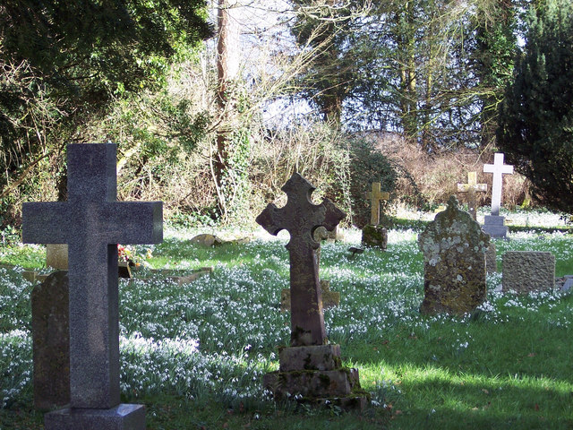 Snowdrops and graves stones at Manston Churchyard