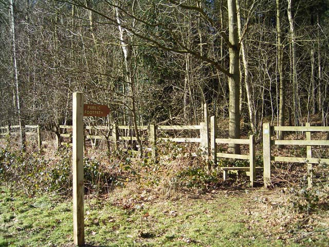 Footpath Into Chantry Wood