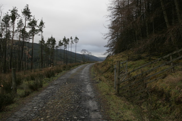 Forestry gate near Linne Mhor, Glen Fyne