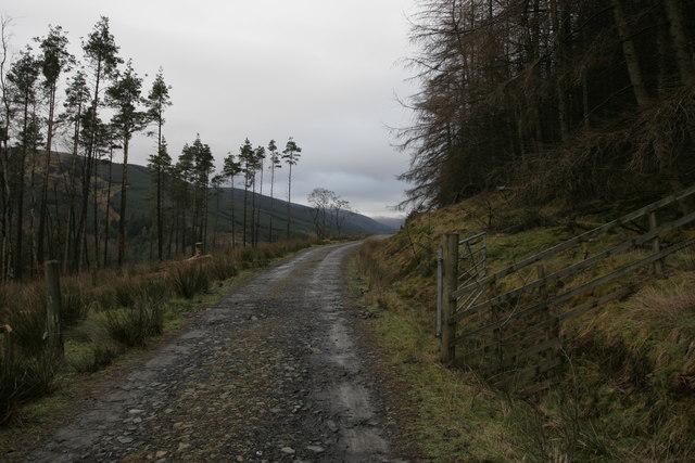 Forestry gate near Linne Mhor, Glen Fyne