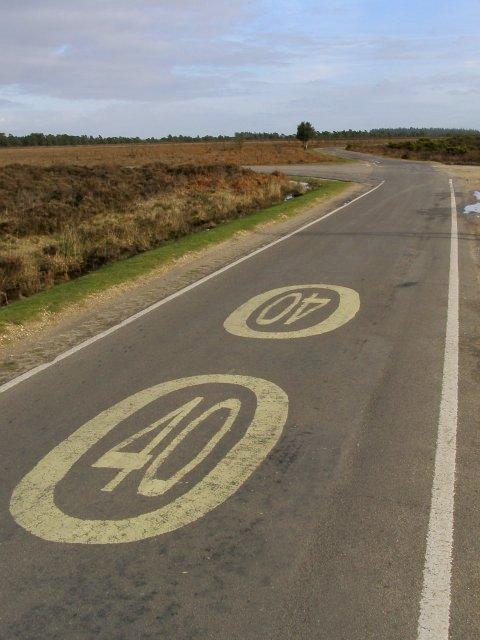 Road to Bolderwood, Broomy Plain, New Forest