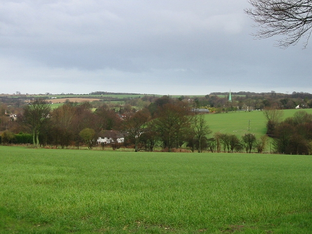 View, looking N from Mill Lane, Derringstone Downs