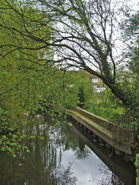 River at Mill Green, Hertfordshire