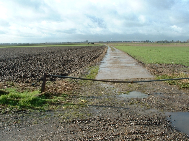 Farm track off Laddus Drove