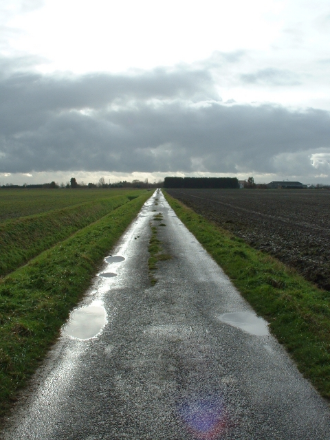 Track near Common Farm, Upwell
