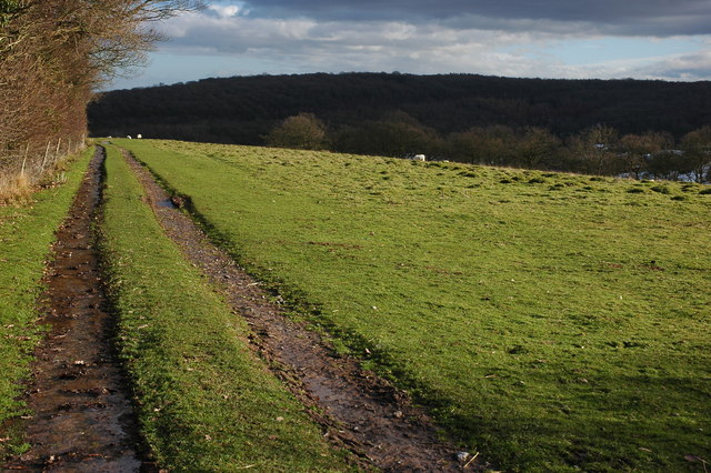 Track and footpath to Hope under Dinmore
