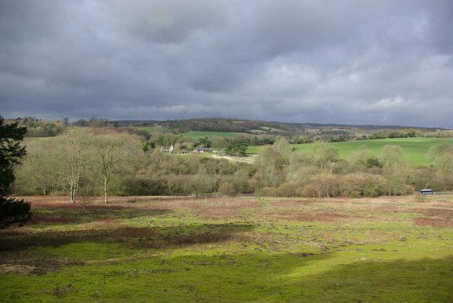 View across Fairmile Bottom