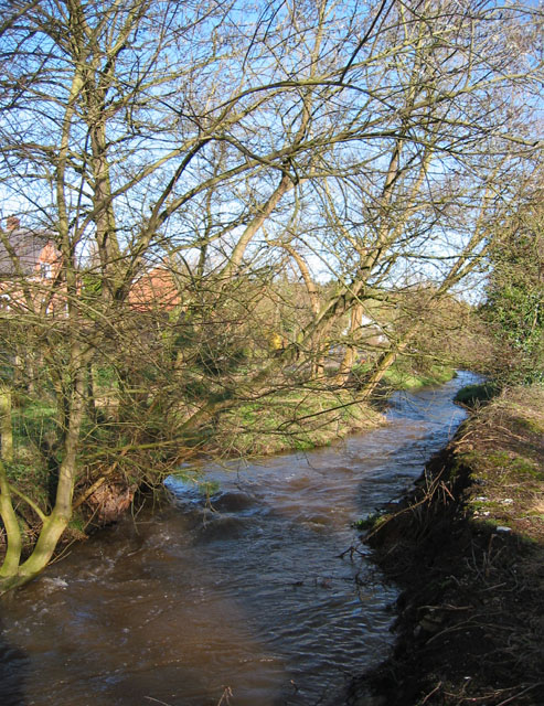 Wych Brook at Higher Wych