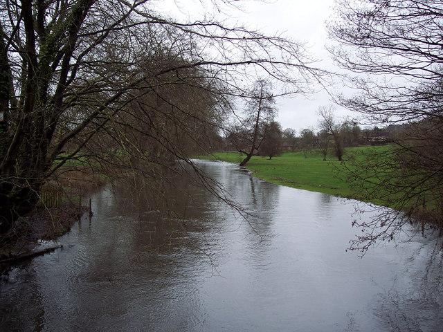 River Avon near Heale House