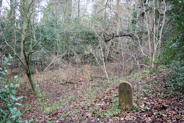 Boundary at Ancient Earthwork