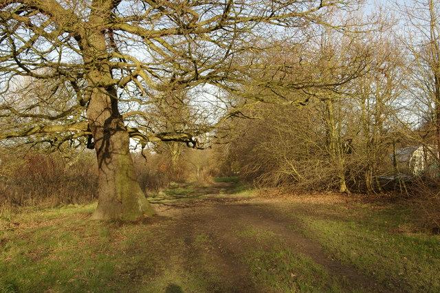 A quiet corner near Cannon Hill