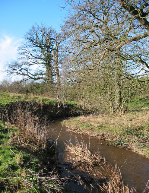 Wych Brook, near Wolvesacre Mill
