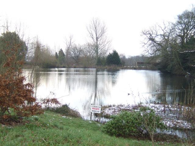 Fishing pond beside Horsegrove Farm