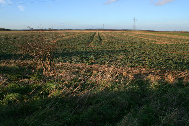 Farmland between Osbournby and Mareham Lane