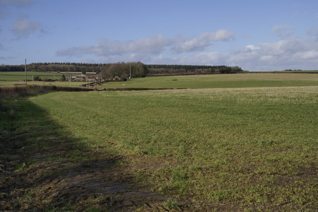 Looking North to Bushes Farm