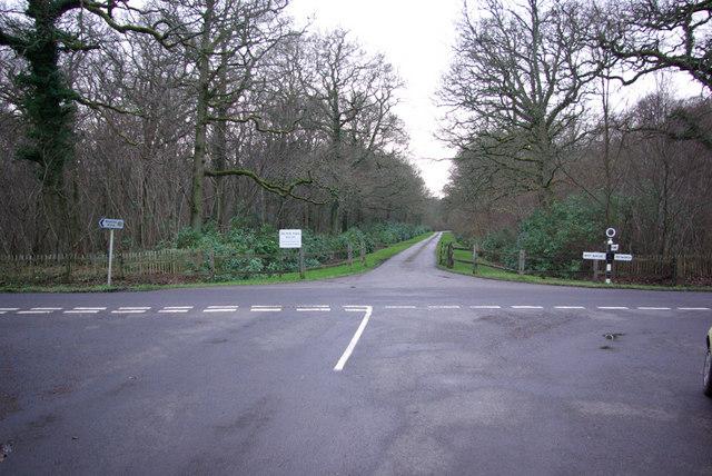 Entrance Drive , Bignor Park